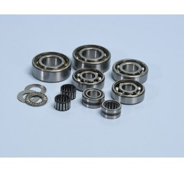 set of bearings for Polini...